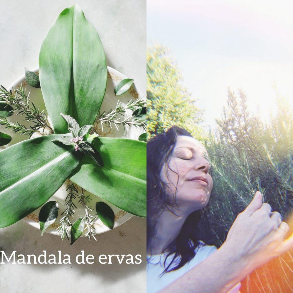 Maria Madureira fala sobre fitoenergia